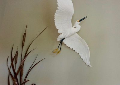 Snowy Egret Entrance